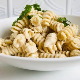 A white bowl filled with pasta in a creamy sauce.